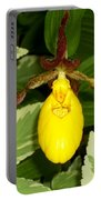Wisconsin Yellow Lady Slipper Portable Battery Charger