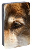 Wise Old Collie Eyes Portable Battery Charger
