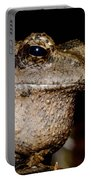 Wise Old Frog Portable Battery Charger