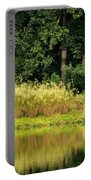 Wispy Wild Grass Reflections Portable Battery Charger