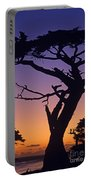 Witch Tree Monterey California Portable Battery Charger