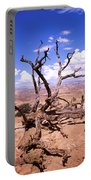 Withered Tree Paria Canyon Portable Battery Charger