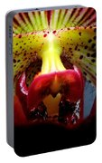 Within The Lady Slipper Portable Battery Charger