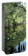 Withlacoochee River Reflections Portable Battery Charger