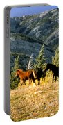 Wlid Brumbies Portable Battery Charger