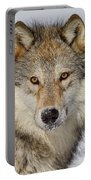 Wolf Face To Face Portable Battery Charger