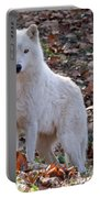 Wolf In Autumn Portable Battery Charger
