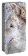 Wolf In Disguise Portable Battery Charger