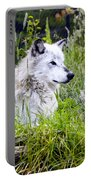 Wolf In The Grass Portable Battery Charger