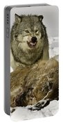 Wolf Protecting Kill Portable Battery Charger
