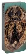 Wolf Spider 5x Portable Battery Charger