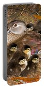 Wood Duck Aix Sponsa Portable Battery Charger