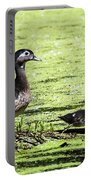 Wood Duck And Baby Portable Battery Charger