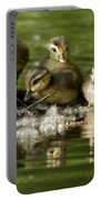 Wood Duck Babies Portable Battery Charger