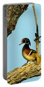 Wood Duck Drake In Tree Portable Battery Charger