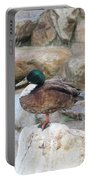 Wood Duck On Fountain Portable Battery Charger