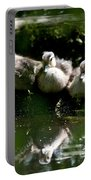 Wood Ducklings On A Log Portable Battery Charger