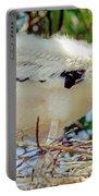 Wood Stork Mycteria Americana Portable Battery Charger