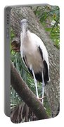 Wood Stork On A Limp Portable Battery Charger