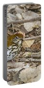 Wood Thrush Portable Battery Charger