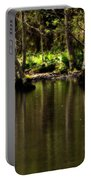 Wooded Reflection Portable Battery Charger
