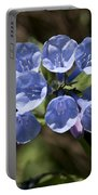 Woodland Blue Portable Battery Charger