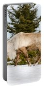 Woodland Caribou Portable Battery Charger