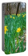 Woodland Daffodils Portable Battery Charger