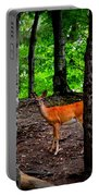 Woodland Deer Portable Battery Charger