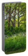 Woodland Phlox   Portable Battery Charger