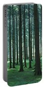 Woodland Scene In Gougane Barra Forest Portable Battery Charger