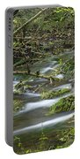 Woodland Stream - Monk's Dale Portable Battery Charger