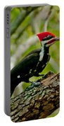 Woodpecker On A Limb Portable Battery Charger