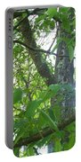 Woodpecker Tree Art Portable Battery Charger