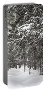 Woods In Winter Portable Battery Charger