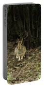 Woodsy Rabbit Portable Battery Charger
