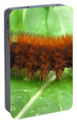 Wooly Bear  Portable Battery Charger