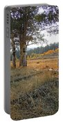 Wyoming Gold Portable Battery Charger