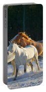 Wyoming Horses Portable Battery Charger