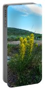 Wyoming Wildflowers Indian Paintflowers Portable Battery Charger