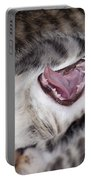 Yawning Kitten Portable Battery Charger