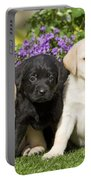 Yellow And Black Labrador Puppies Portable Battery Charger