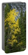 Yellow And Green Portable Battery Charger