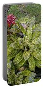 Yellow And Green Bromeliad Portable Battery Charger