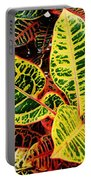 Yellow And Green Croton Portable Battery Charger