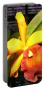 Yellow And Orange Cattleya In The Hothouse Portable Battery Charger