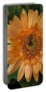 Yellow And Peach Daisy Portable Battery Charger