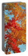 Yellow And Red Portable Battery Charger