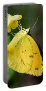Yellow And Yellow Sulphur Butterfly Portable Battery Charger