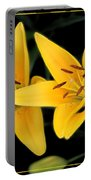 Yellow Beauties Portable Battery Charger